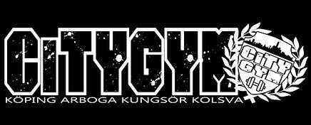 logga_stor.jpg