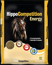 Hippo Competition Energy