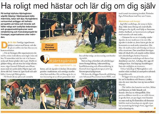 artikel_ha_roligt.JPG