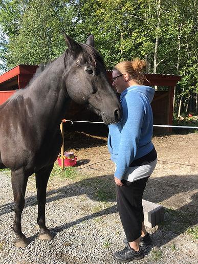 Individuellt möte med hästen