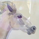 """Hästhuvud """"akvarell"""""""