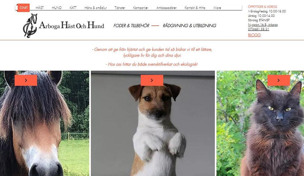 Startsidan på arbogahastochhund.se