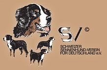 ssv logoStart.jpg