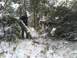 Independent volunteers continue to maintain the existing trails.