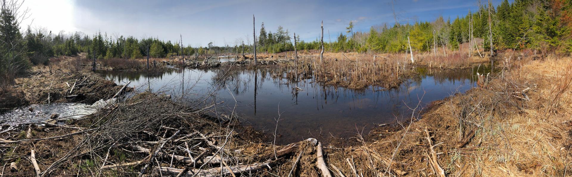 Barret Lands, R.Vinson