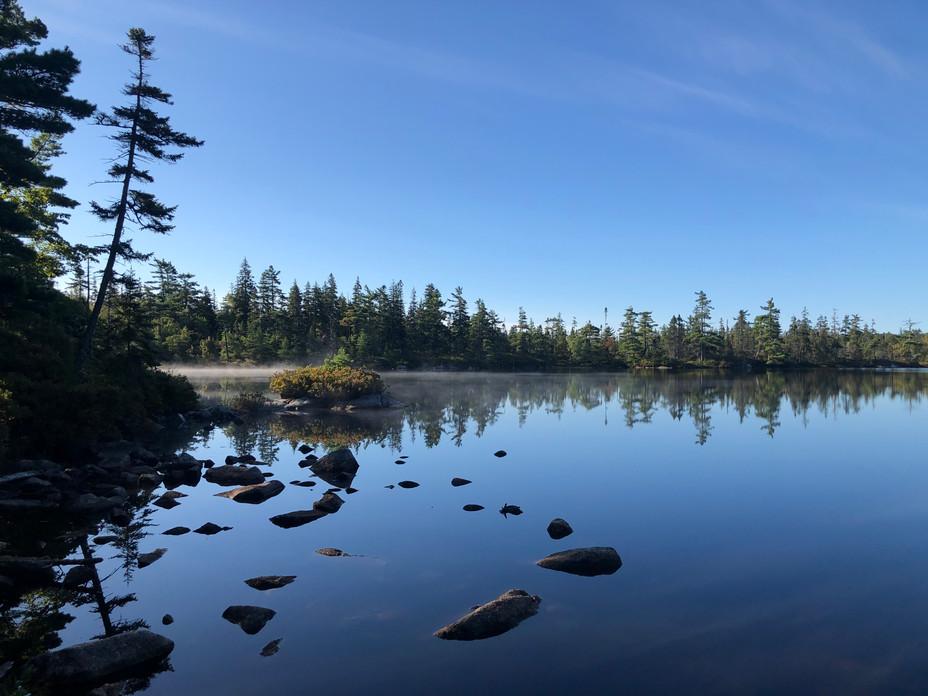 Richard Vinson, Hobson Lake Morning