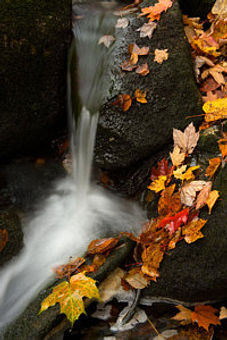 autumn-leaves-and-small-waterfalls-2-irw