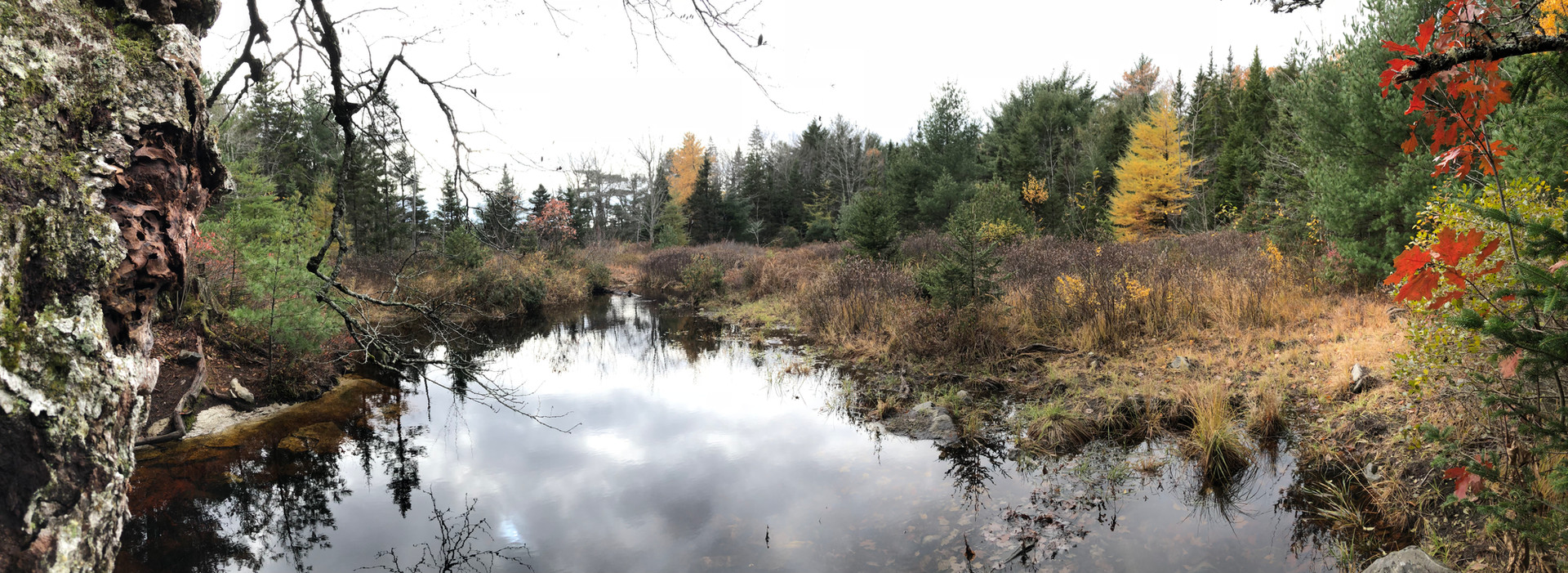 Richard Vinson, Hobson Lake Outlet