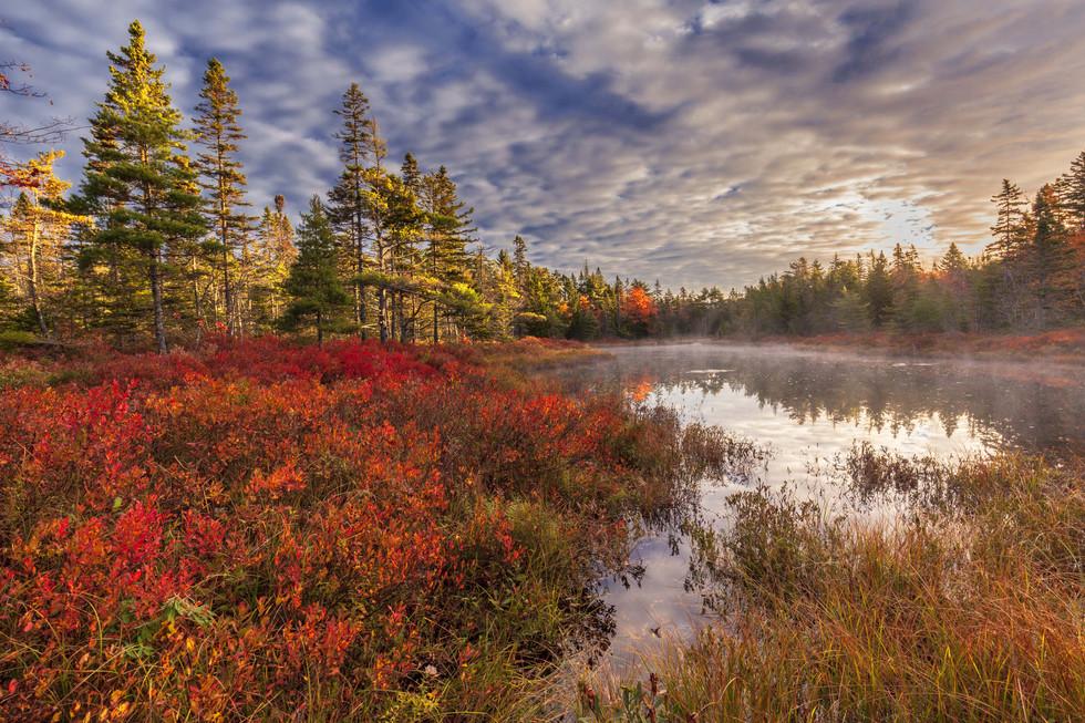 Irwin Barrett,  Frasers  Pond