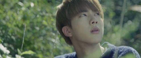 BTS Bangtan Seokjin Jin run HYYH screenshot theory Butterfly