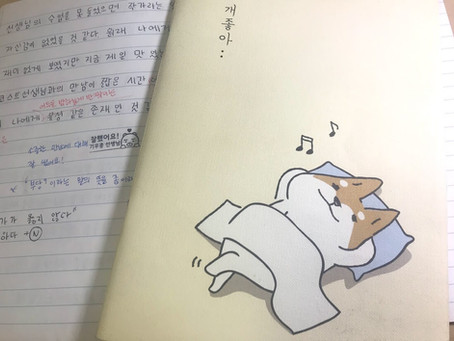 Day 16: Studying