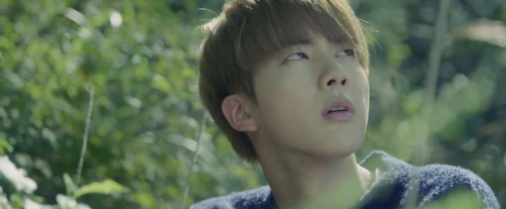 Jin Seokjin Butterfly RUN HYYH BTS Bangtan theory