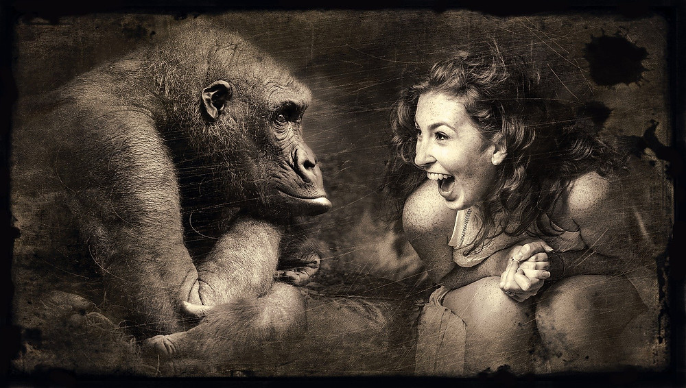 how to get a secret literary agent publishing publish your manuscript excited woman with peaceful gorilla monkey