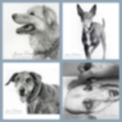 Pet-Portrait-Button.jpg