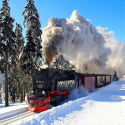WINTER TRAIN 8' X 8'
