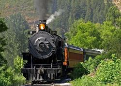 TRAIN 7' X 5'