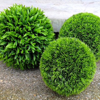GRASS SPHERES