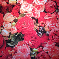 RED ROSES 10' X 10'