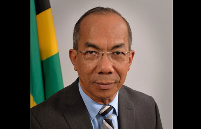 Gov't Going All Out To Stem Importation Of Illegal Weapons, Chang Tells US Diaspora