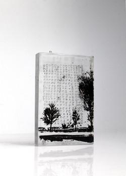 Architecture verticale, pâte de verre et sérigraphie, 2018