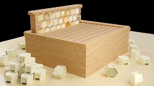 My Easy Hive (prix TTC *)