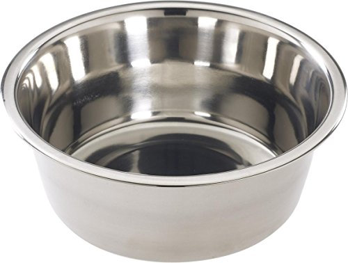 SPOT Mirror Finish Bowl | Stainless Steel | Pet Dish | Pet Dish For Dogs | Pet D