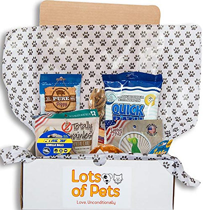 Lots of Pets Dog Party Box (Large Dogs)