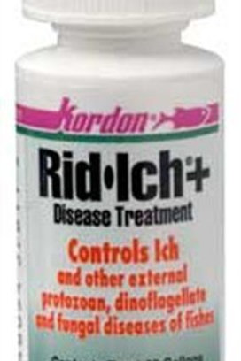 KORDON  #37611  Rid Ich for Aquarium, 1-Ounce