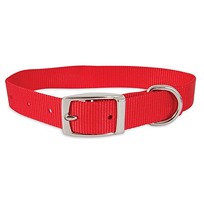"Aspen Pet Products Nylon Collar, 18"" x 1"", Red"