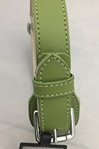 """Aspen Pet Products Petmate Leather Collar, Green, 1"""" x 18"""""""