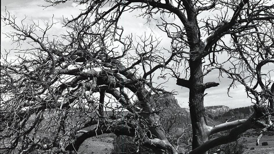 Deadwood, Ghost Ranch, NM