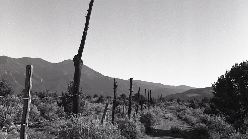 Morning Walk, Taos,  NM