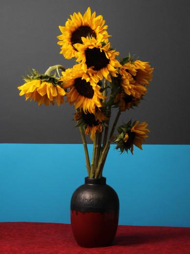 Sunflowers, 2018