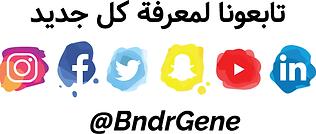 Social Icons BndrGene.png