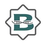 BndrGen logo