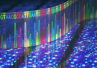 تحاليل الحمض النووي | بندرجين | المدينة المنورة