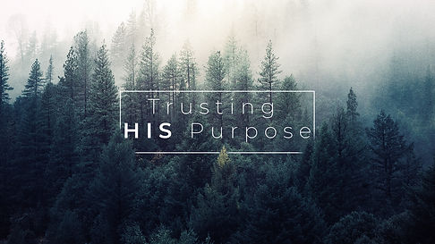 Trusting HIS Purpose - Normal.jpg