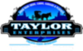 LZRD Taylor Web.png