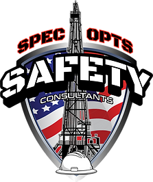 LZRD Spec Opts Safety Web.png