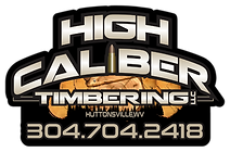 LZRD High Caliber Timber Web.png