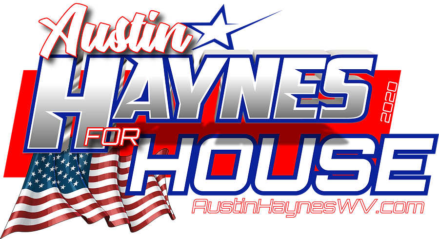 Austin Haynes For House.png