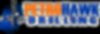 LZRD PetroHawk Drilling Web.png