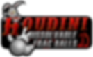 LZRD Houdini DFB Web.png