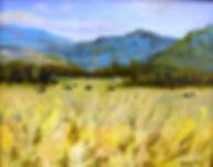 Fall Pasture.JPG
