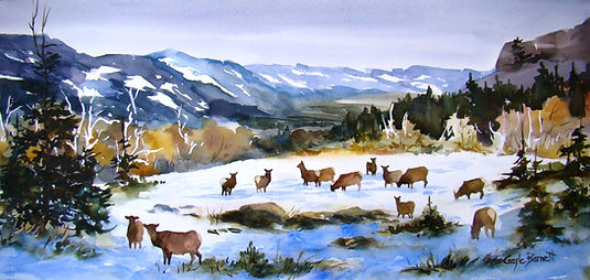 Elk on Moncrieffe Ridge.JPG