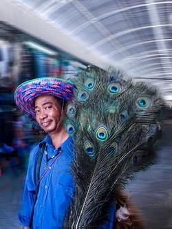 Feather vendor by Bransha Gautier