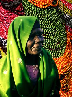 Dervish Lady by Bransha Gauti