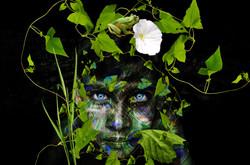 Madesh by Bransha Gautier