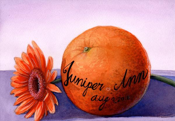 """""""Juniper Ann"""""""