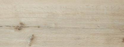 Raw Oak.jpg